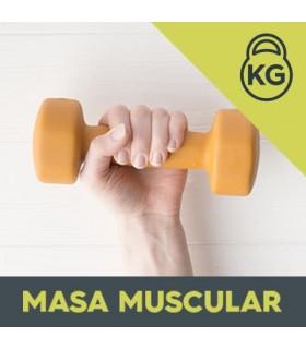 Plan Dieta Aumento de Masa Muscular